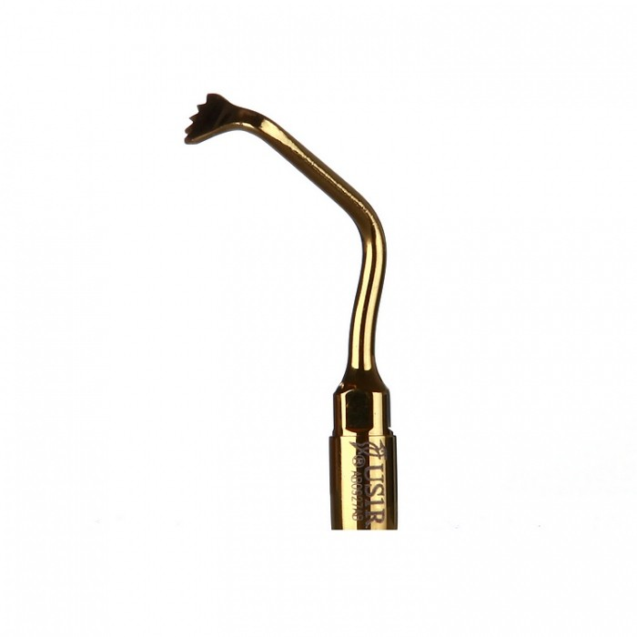 Scaler tips-Gold Ultrasonic Surgybone US1R